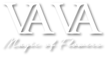 VA VA - Magic of Flowers